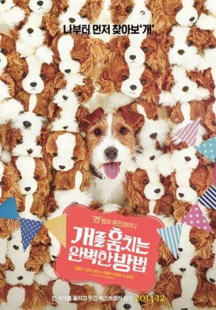 How to Steal a Dog /2014/ 67009703