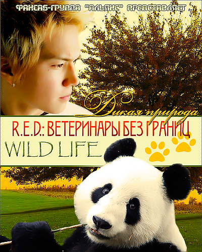 Дикая природа ~R.E.D.: ветеринары без границ~ [2008] / Wild Life - Veterinarians Without Borders R.E.D.